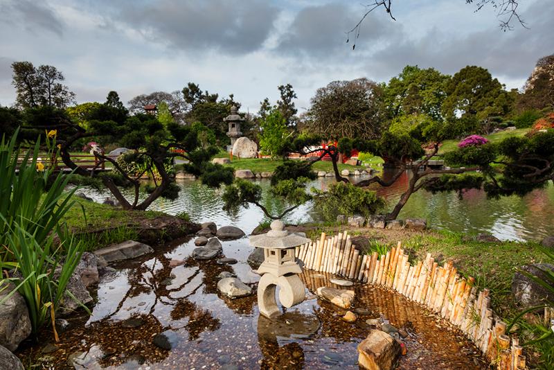 plantas do jardim japonesJardim Japonês de Buenos Aires, um charmoso