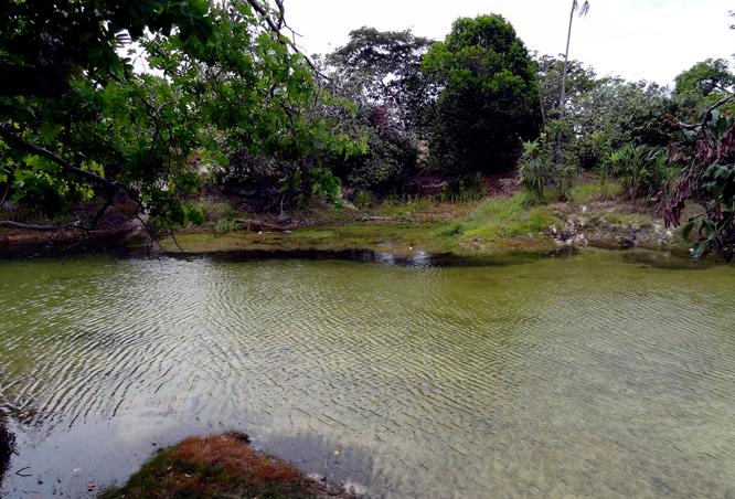 igarape-agua-boa