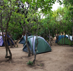 camping-taiua4