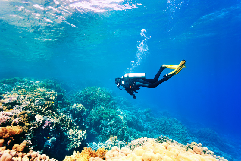 mergulho-batismo-noronha