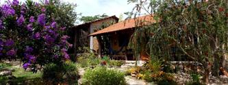 vila-dos-ipes