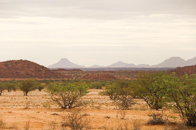 A caminho de Twyfelfontein